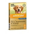 Advocate Dog 6 Pack_BAY0140_2