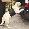 Dog Lifting Harness_DHRN_0