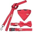 Matching Dog Collar & Lead Set_HD1163_0