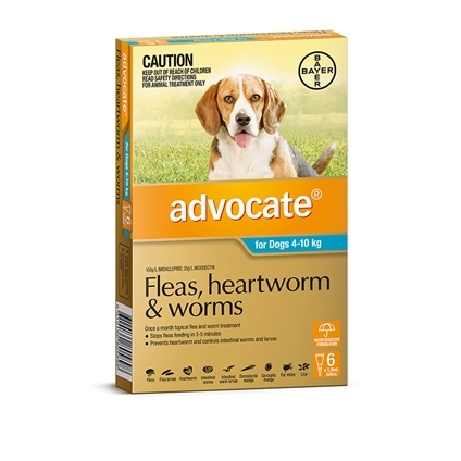 Advocate Dog 6 Pack