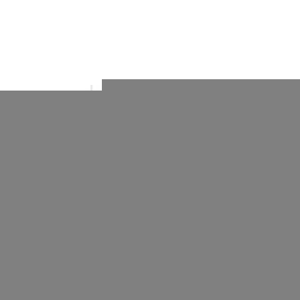 Bungee Extendable Dog Collars
