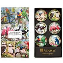 Gift Boxed Magnet Collection