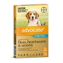 Advocate Dog 3 Pack