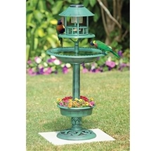 Bird Bath with Planter