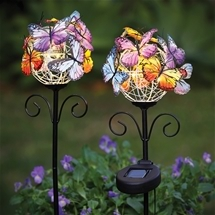 Set of Solar Butterfly Lamps