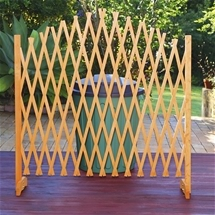Extendable Lattice Screen