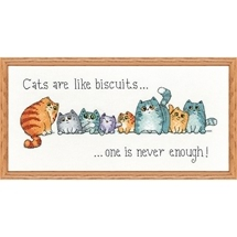 Cats & Biscuits