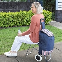Shopping Trolley with Fold-Away Seat