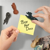 Cat & Dog Fridge Magnets