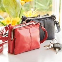 Handy Purse Set