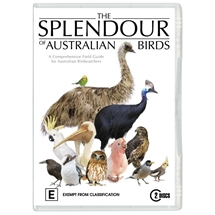 Splendour of Australian Birds