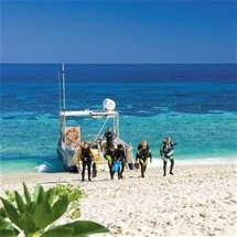 Lady Elliot Island - 5 Nights