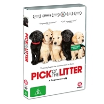 Pick of the Litter - A Dogumentary