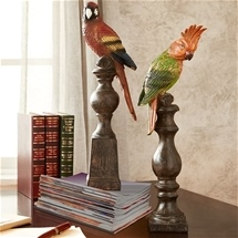 Parrot Paperweight Set