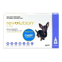 Revolution Dog 6 Pack