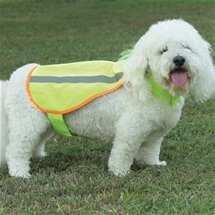 Thermal Dog Jacket