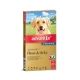 Advantix Dog 3 Packs_BAY0060_3
