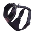 Adjustable Padded Dog Harness_HD1125_0