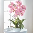 Artificial Orchid Pot_POTFP_0