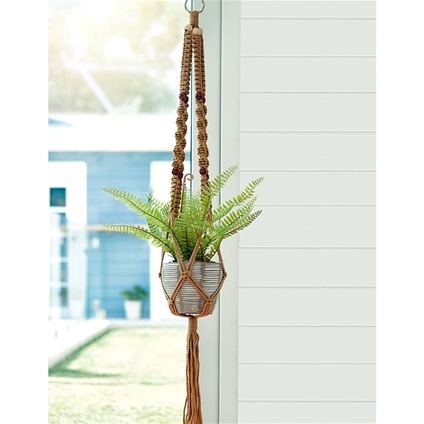 Hanging Fern Pot