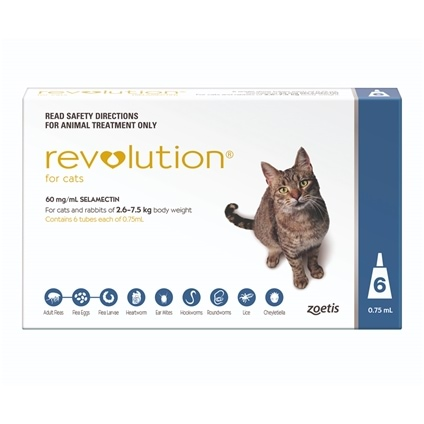 Revolution Cat 6 Pack